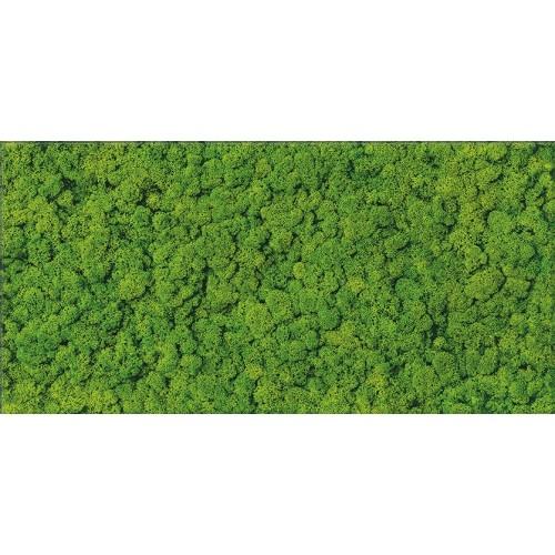 Cersanit Fresh Moss Glass Inserto 29x59 dekor