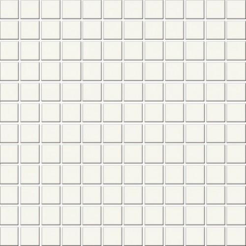 Opoczno Palette White Mat Mosaic 30x30 mozaik