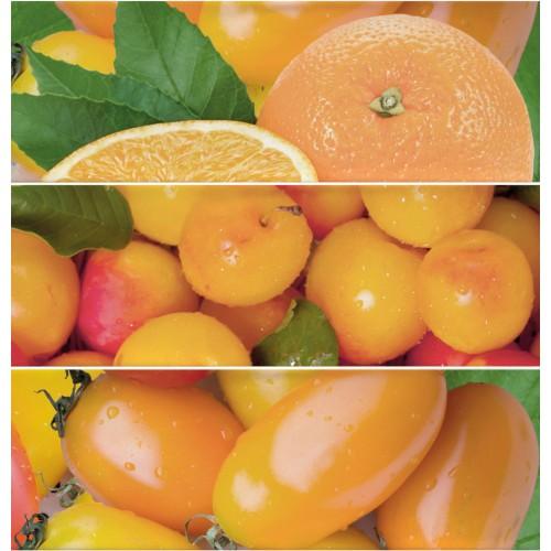 Cifre Ceramica Composicion Citrus Naranja 30x30 dekor csempe szett (3 db)